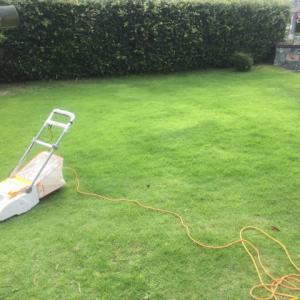 寝屋川市にお庭の芝刈りに行って来ました…大阪・寝屋川市の遺品整理士/便利屋銀さん