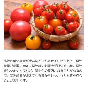 トマトの美容効果!