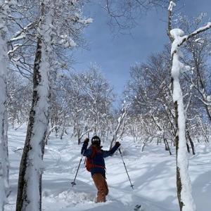 求ム! 八甲田スキー場の情報!