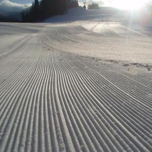 基礎スキーから離れたワケ
