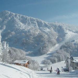 風邪はスキーで治るか?