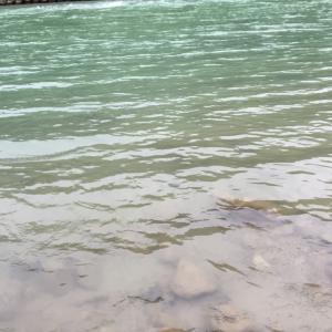 秋の犀川へ