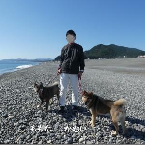 海散歩♪ @熊野古道*七里御浜