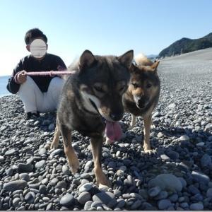海散歩♪ 後編☆ @熊野古道*七里御浜