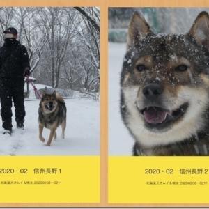 PhotoBook 製作日記 * 01