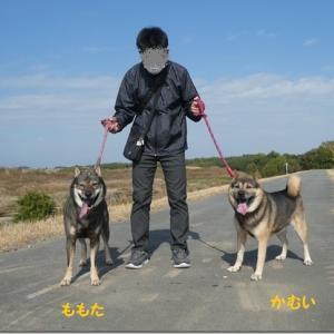 ひさびさ☆ 電車散歩♪