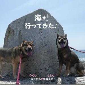 2021*GW 海散歩♪ @熊野☆ 前編