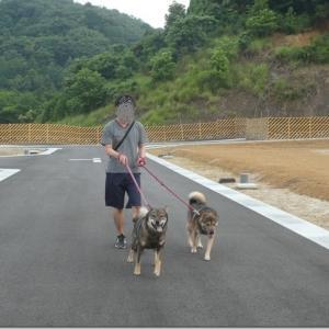 休日☆夕散歩♪