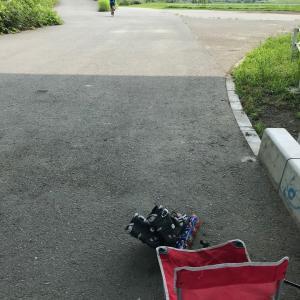 インライン8日目