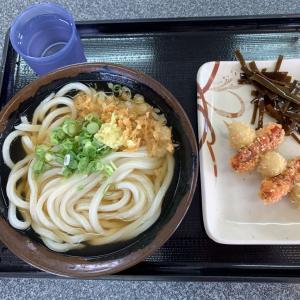 キッチリ〆ったヒヤカケ麺に濃いめの出汁・・・GOOD(゚∀゚)b        高松市「てら屋」