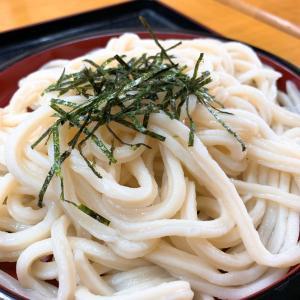 イイ感じのザルうどんでした♬                        高松市「藤村製麺所」