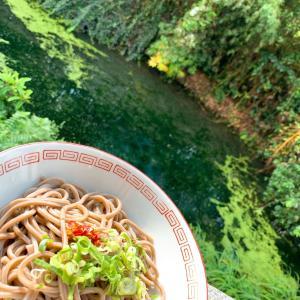 今日も元気だ蕎麦が美味いっ♪                        綾川町「池内うどん」