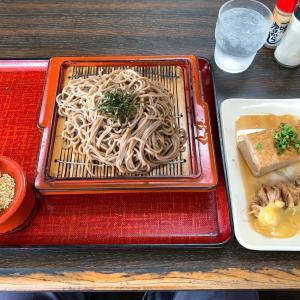 ザル蕎麦は小でもモリモリ♪                         さぬき市「牟礼製麺」