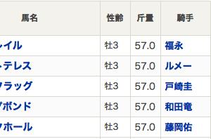 菊花賞圧勝で【G1スタイルズ】4戦2勝のイーブンw 好評【直前割】まだ続くでww
