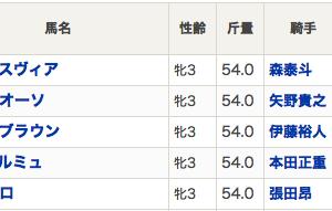 【南関スタイルズ】連日のメインジャック穴ハメ! 浦和桜花賞も8人気レディブラウンから3連複3点ハイドンやw