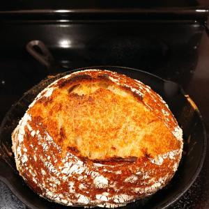 発酵したグレープフルーツジュースからカンパーニュを焼く♪