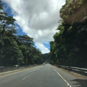 色々な景色が見られるハワイ