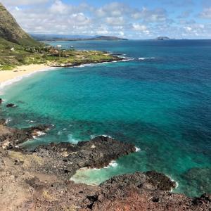 今週のハワイ情報