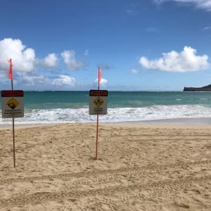 美しいビーチワイマナロ