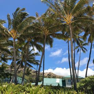 ハワイのビーチを思い出して・・・