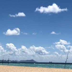 ハワイ最新の写真