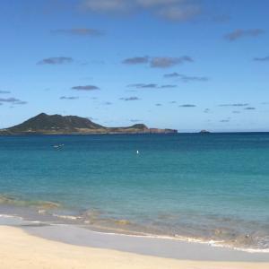 ハワイの情報・入国前のオンライン申請