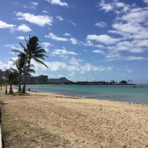 ★アラモアナビーチでのんびり〜大間のマグロ漁船