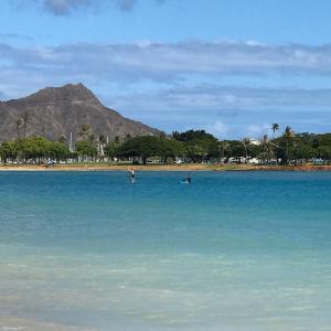 ★ハワイに行きたい気持ちが高まるけど行かれない〜!