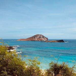 ★ハワイ東岸でインスタ映えするスポット