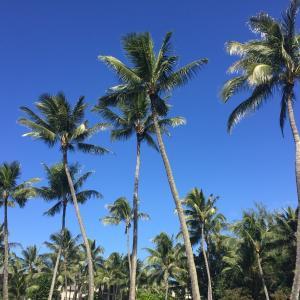 ★ハワイの親友とLINE通話