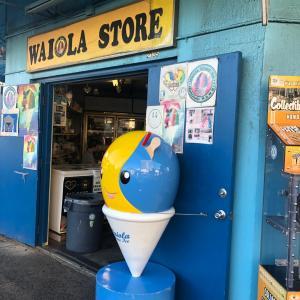 ★暑い日に食べたくなるハワイのシェイブアイス