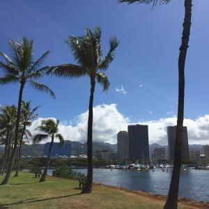 ★ハワイ滞在中の朝のウォーキングコース・マジックアイランド