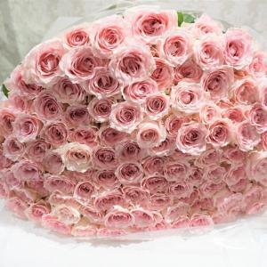 108本ピンク色の薔薇花束❣ 花言葉は「愛の誓い」プロポーズでインパクトを狙う!?レカンフラワー