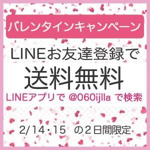 2日間限定♡LINE友達登録で送料無料♡バレンタインクーポン