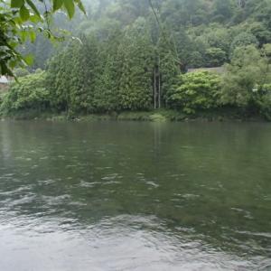 宮川下流漁協 釣行記 2021.06.27