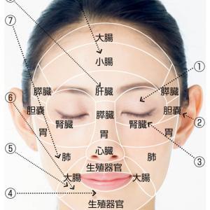 ++肌トラブルは体からのメッセージ!!フェイスマップ=顔の地図++