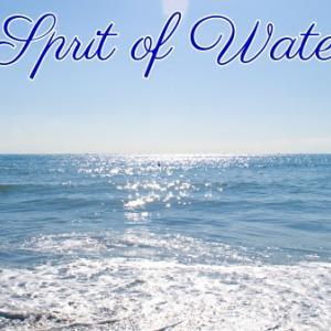 *水のスピリット(Sprit of Water)*ネイティブスピリットオラクルカードより、今週のエンジェルメッセージ(Nov.11)