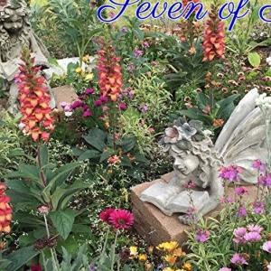 *春の7(Seven of Spring)*フェアリータロットカードより、今週のエンジェルメッセージ(Dec.2)