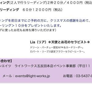 *サロン便り:12月の店頭リーディング@ライトワークス五反田本店でお花のヒーリングプレゼントのお知らせ*(Dec.10)