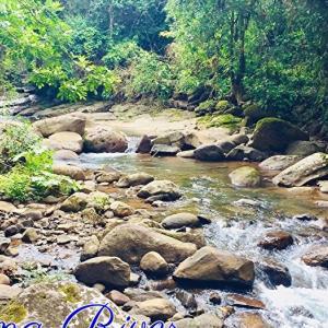 *流れる川(Flowing River)*ネイティブスピリットオラクルカードより、今日のエンジェルメッセージ(Jan.20)