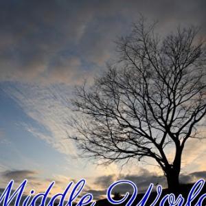 *地上世界(Middle World)*ミスティカルシャーマンオラクルカードより、今日のエンジェルメッセージ(Jun.18)