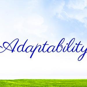 *オンヤ:適応する力(Adaptability)*女神のパワーオラクルより、今日のエンジェルメッセージ(Jul.9)