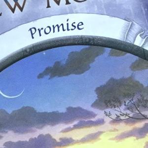 *新月(New Moon)*アースマジックオラクルカードより、今日のエンジェルメッセージ(Sept.8)