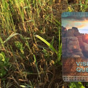 *ビジョンクエスト(Vision Quest)*ネイティブスピリットオラクルカードより、今週のエンジェルメッセージ(May 17)