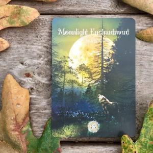 *Moonlight Enchantment*セイクレッドフォレストオラクルより、今週のエンジェルメッセージ(Sept.20)