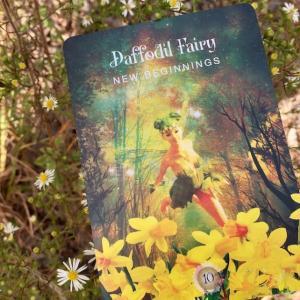 *Daffodil Fairy: New Beginnings*セイクレッドフォレストオラクルより、今週のエンジェルメッセージ(Sept.27)