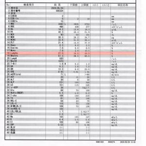 5/26 神経内科受診 /採血 /治験参加について