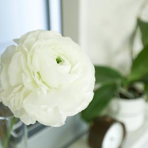 身近にある「開花」