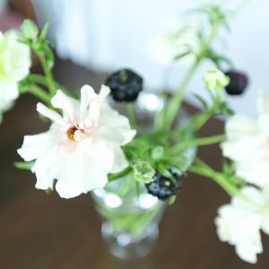 花瓶を変えると、切り花が長持ちする? お世話しやすいデザインはコレ