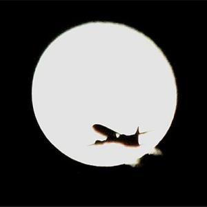 中秋の名月 月に叢雲花に風 月丼